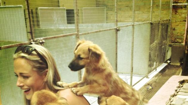 Reeva and three puppies. Steenkamp's publicist Sarit Tomlinson told Sky News that she was a
