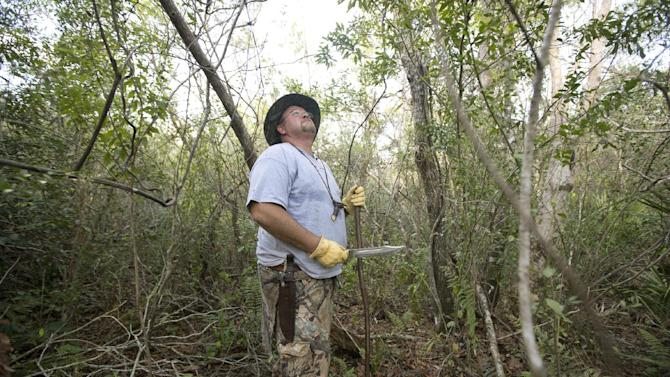 "Dan Keenan, a mechanical engineer, looks for python nests as he makes his way through the thick underbrush in the Big Cypess National Preserve, Saturday, Jan. 12, 2013. Officials hope the ""Python Challenge"" competition will help rid the Everglades of the invaders while raising awareness about the risks exotic species pose to Florida's native wildlife. (AP Photo/J Pat Carter)"