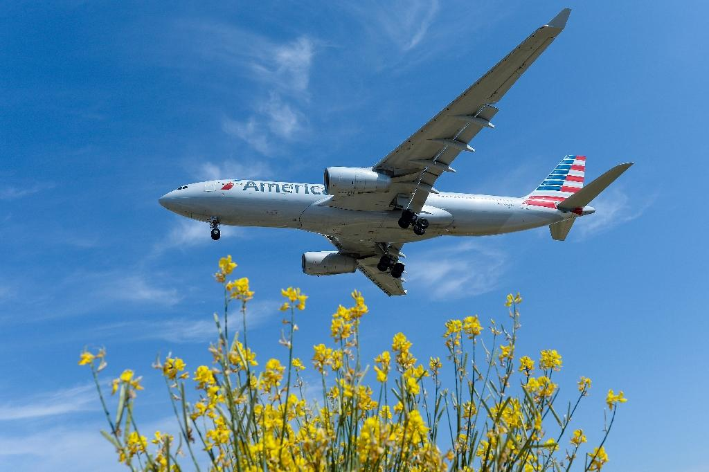 Brexit hits US airline, travel stocks