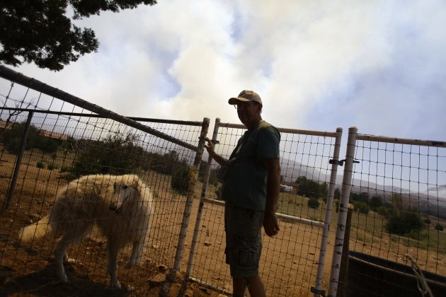 A man, alongside his dog, Sundance, watches smoke rising from the Doce Fire near his home in Yavapai County