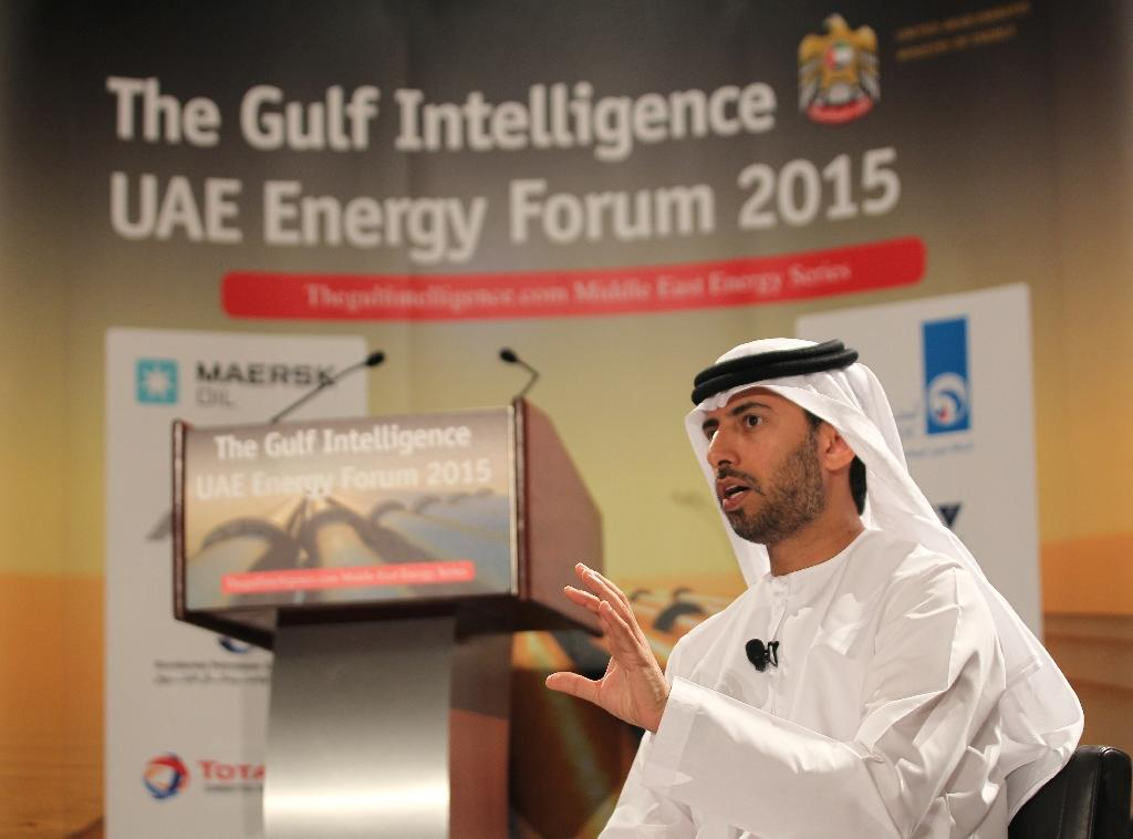 UAE says to invest $35 bln in clean energy by 2021