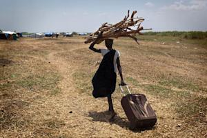 A South Sudanese woman walks with wood to reinforce …
