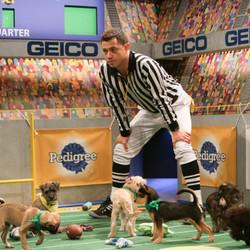 The Puppy Bowl's Utterly Adorable And Powerful Adoption Message