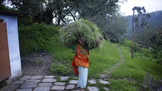 "In this Aug. 24, 2012 photo, Hira Devi, mother of B2R employee Bhuwan Butholia, returns home carrying fodder for their domestic animals in Simayal, India. Butholia, 28, who used to make 8,000 rupees (US$160) with overtime in an auto parts factory 150 kilometers (90 miles) away, said the lower salary at B2R was a reasonable tradeoff for being able to look after his parents and live with his wife and five-month-old baby. His mother disagreed. ""We were poor. We are still poor."" (AP Photo/Saurabh Das)"
