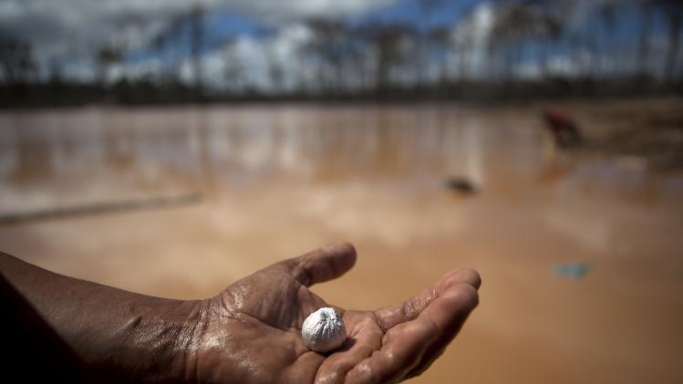 In this May 4, 2014 photo, a miner holds an amalgam of mercury and gold he mined after working a 28-hour shift at an illegal gold mining process, in La Pampa, in Peru's Madre de Dios region. Thousands of artisanal gold miners sweat through the long shifts and endure, for a few grams of gold, the perils of collapsing earth, limb-crushing machinery and the toxic mercury used to bind gold flecks. (AP Photo/Rodrigo Abd)