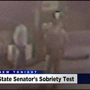 Surveillance Video Shows State Senator's Sobriety Test During DUI Arrest