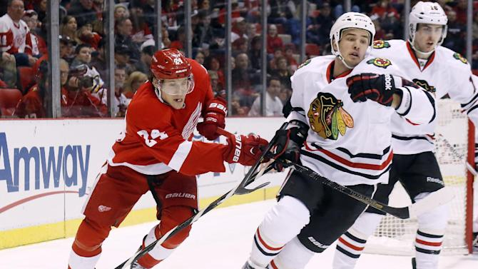 Detroit Red Wings center Damien Brunner (24) tries to tie up Chicago Blackhawks defenseman Niklas Hjalmarsson (4), of Sweden, in the first period of an NHL hockey game on Sunday, March 3, 2013, in Detroit. (AP Photo/Duane Burleson)