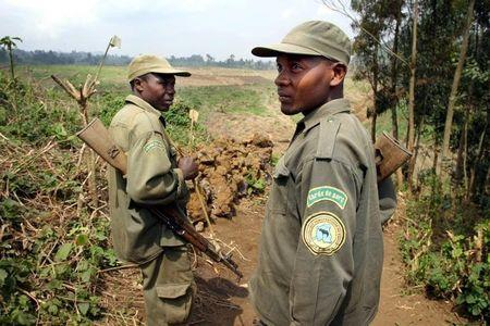 Poachers kill four rangers, army officer in Congo park