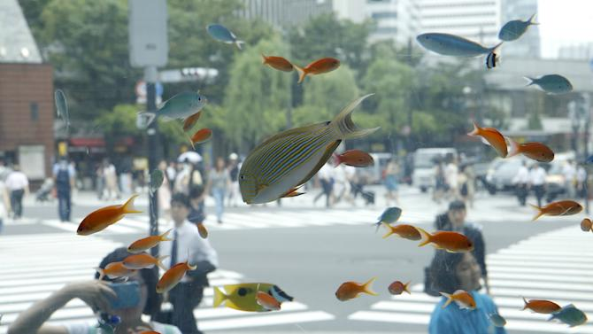 Tropical fish from the southern Japanese island of Okinawa swim in a temporary aquarium in Tokyo's Ginza shopping district