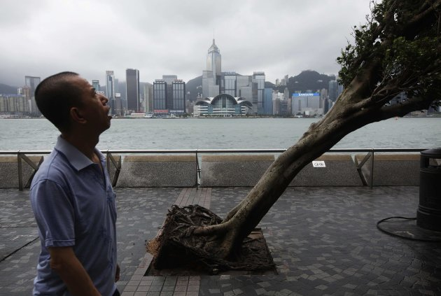 A man reacts while walking past an uprooted tree after Typhoon Vicente hit Hong Kong July 24, 2012. A severe typhoon hit Hong Kong on Tuesday, disrupting business across the financial hub, with offices and the stock market to remain closed for at least part of the morning after the city raised its highest typhoon warning overnight. REUTERS/Tyrone Siu (CHINA - Tags: ENVIRONMENT DISASTER BUSINESS CITYSPACE TPX IMAGES OF THE DAY)