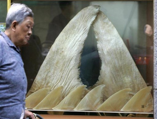 <p>A woman walks past a store selling shark fin in Hong Kong. Cathay Pacific said Wednesday it would no longer carry unsustainably sourced shark products on its cargo flights, dealing a blow to Hong Kong's huge shark fin industry.</p>