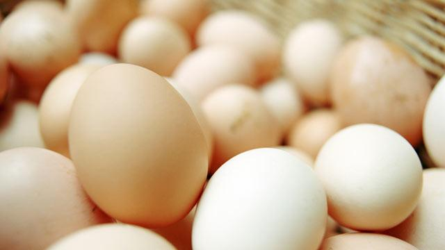 The Truth About Your Eggs