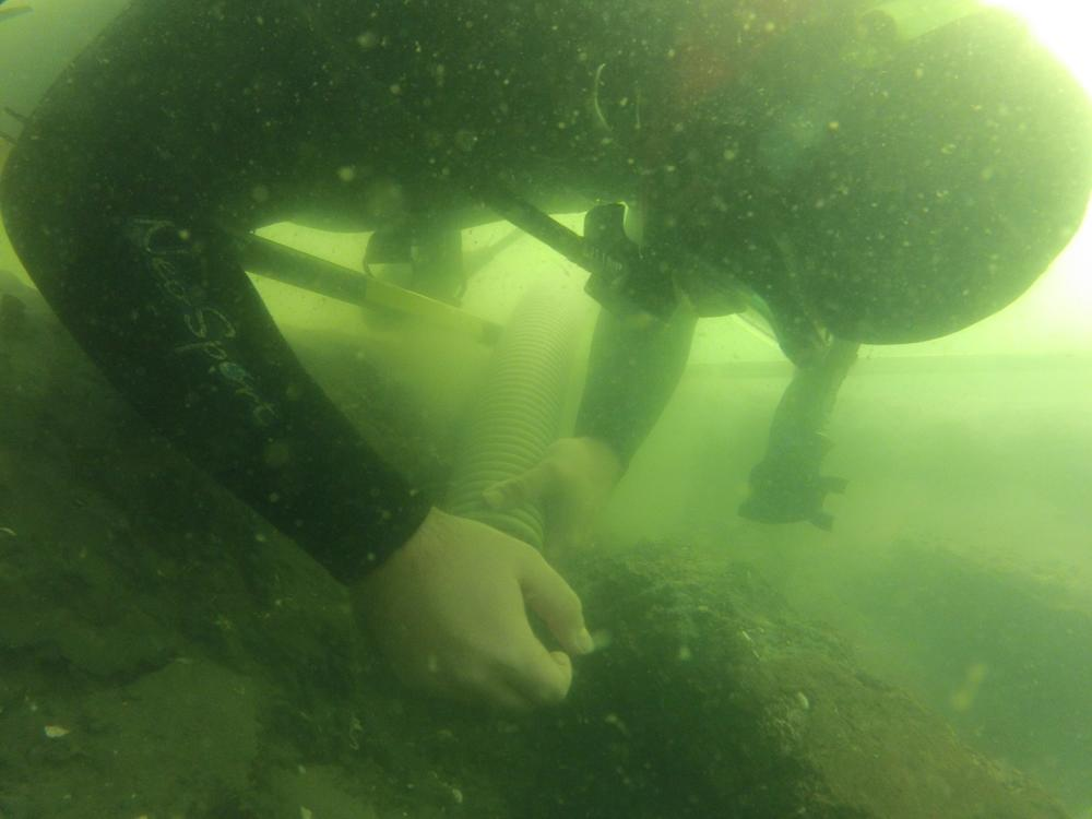 Wreck of 16th-Century Spanish Ship Found Off Florida Coast