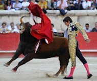 A French matador performs a 'muleta pass' during a bullfighting bout in Nimes on September 16. France's Constitutional Council has rejected a request by animal-rights activists to ban bullfighting in the southern areas where it is still authorised