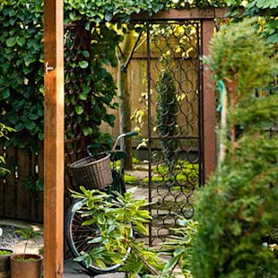 Plumbing pipe becomes a garden gate