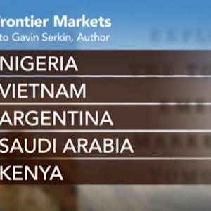 Nigeria Seen As Top Frontier Market: Serkin