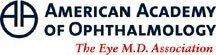 Nationally Recognized Physician, Paul Sternberg Jr., M.D., Begins Term as President of the American Academy of Ophthalmology