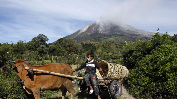 A villager rides a cow cart as Mount Sinabung is seen in the background in Karo, North Sumatra, Indonesia, Monday, Sept. 16, 2013. Thousands of people have been evacuated from their homes after the volcano erupted Sunday. (AP Photo/Binsar Bakkara)