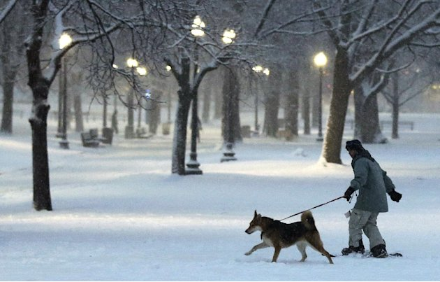 A dog pulls a snowboarder through the Boston Common in Boston, Friday, Feb. 8, 2013. Mass. Gov. Deval Patrick declared a state of emergency Friday and banned travel on roads as of 4 p.m. as a blizzard