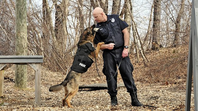 Vested Interest in K-9s Arms Police Dogs with Bulletproof Vests (ABC News)