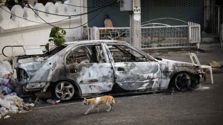 A cat walks past a burnt car as anti-government protesters continue to occupy streets surrounding Government House in Bangkok