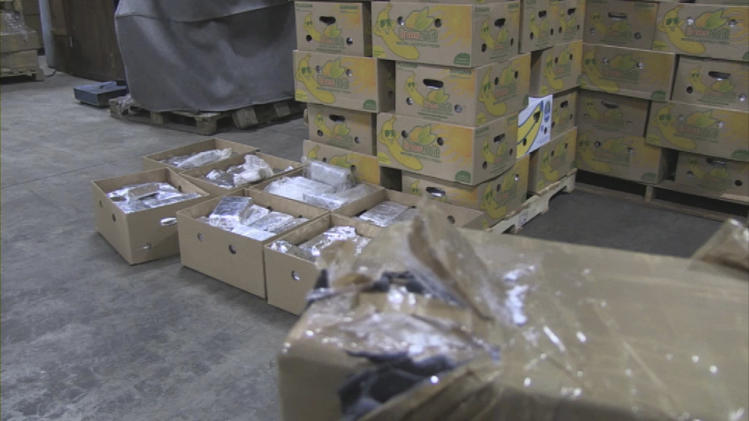 In this image released by the Dutch Interior and Justice Ministry on Friday Oct. 12, 2012, showing a major cocaine seizure displayed Thursday Oct. 11, 2012.  More than eight tons of cocaine were hidden among boxes of bananas when it was seized, and the fruit went to the monkeys and other creatures at the Blijdorp zoo in Rotterdam. The drugs were seized Monday in the Belgian port of Antwerp aboard a ship from Ecuador, while the bananas were allowed to continue on to the zoo in Rotterdam, the shipment's final destination. Dutch authorities say the seizure is the biggest ever in the Netherlands or Belgium. (AP Photo/Dutch Interior and Justice Ministry, HO)