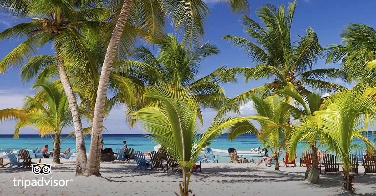 What's the #1 hotel in Punta Cana?