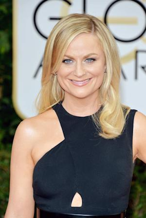Amy Poehler arrives at the 71st annual Golden Globe Awards at the Beverly Hilton Hotel on Sunday, Jan. 12, 2014, in Beverly Hills, Calif. (Photo by John Shearer/Invision/AP)