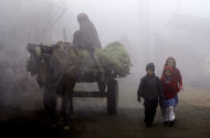 Pakistani schoolchildren, walk to their school during a cold and foggy morning in Peshawar, Pakistan, Wednesday, Jan. 9, 2013. (AP Photo/Mohammad Sajjad)