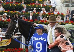 Jockey Nolen embraces Black Caviar trainer Moody after winning the TJ Smith Stakes at Royal Randwick racecourse in Sydney