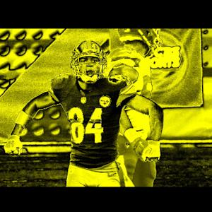2014: Best of Pittsburgh Steelers wide receiver Antonio Brown