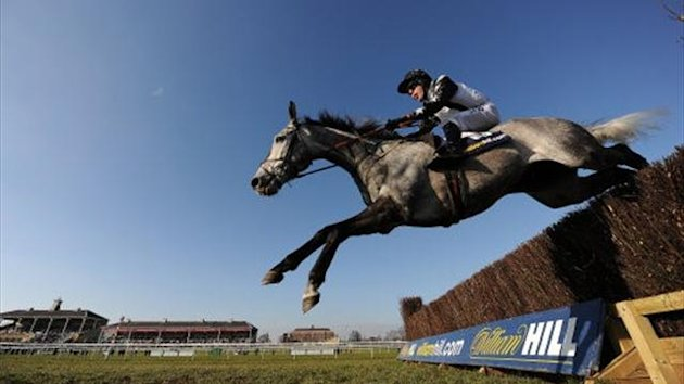 Quentin Collonges, ridden by Andrew Tinkler