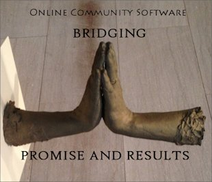Online Community Software: How to Bridge the Gap Between Potential and Results image online community software strategy potential vs reality