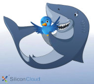 Shark Week and Inbound Marketing: There Will be Blood image Shark Fishing