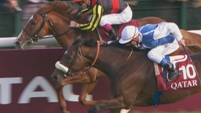 Horse Racing Time: Alles zum Japan Cup
