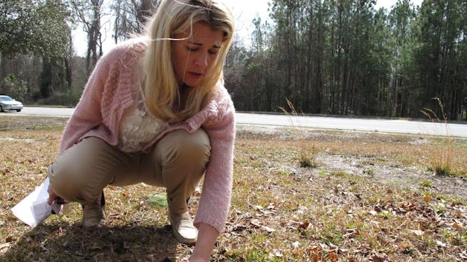 """Mary Blakely clears dirt and grass from a 60-year-old temporary tin marker in the """"Babyland"""" section of Onslow Memorial Park in Jacksonville, N.C. on Wednesday, Feb. 27, 2013. The Marine's daughter scoured this and other graveyards for the names of children who may have died because of contaminated water at nearby Camp Lejeune. (AP Photo/Allen Breed)"""