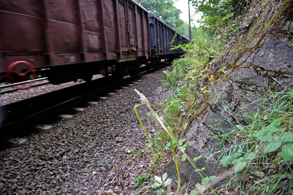 Poland backtracks on Nazi 'gold train' discovery