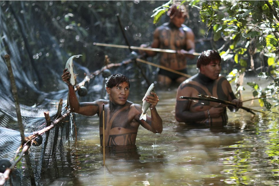 Yawalapiti tribe members catch fish in the Xingu National Park