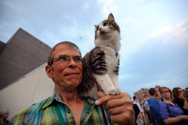 Leroy Bergstrom of Maple Plain, Minn. arrives with his cat Maestro before the Walker Art Center&#39;s first &quot;Internet Cat Video Film Festival,&quot; showcasing the best of cat films on the Internet in Minneapolis Thursday Aug. 30, 2012. The Walker Art Center in Minneapolis held its first-ever online cat video festival, a compilation of silly cat clips that have become an Internet phenomenon, attracting millions of viewers for some of the videos. (AP Photo/Craig Lassig)