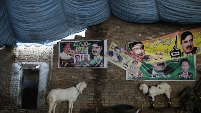 "Goats stand under election banners showing cricket star-turned-politician, and leader of Pakistan Tehreek-e-Insaf party, Imran Khan, and other member of his party, hung on a wall outside a home in Rawalpindi, Pakistan, Monday, May 13, 2013. Nawaz Shari, the Pakistani politician poised to become the country's next prime minister said Monday that Islamabad has ""good relations"" with the United States, but called the CIA's drone campaign in the country's tribal region a challenge to national sovereignty. (AP Photo/Muhammed Muheisen)"