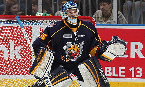Barrie Colts goalie Mathias Niederberger