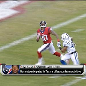 Houston Texans not interested in trading wide receiver Andre Johnson