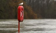 Forecast Floods May Make 2012 Wettest Ever