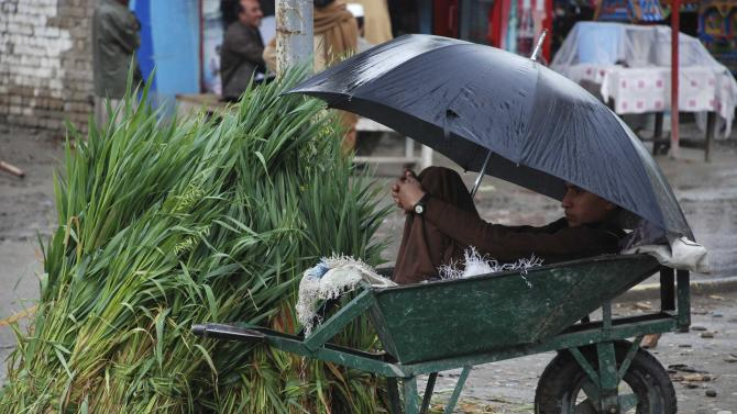 A boy covers under an umbrella as he waits for customers to sell hay in Charsadda
