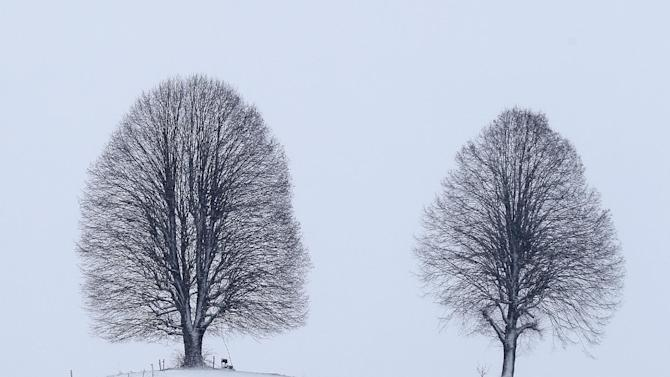 Two trees photographed  in the snow covered landscape near Sumiswald in the Emmental valley, Switzerland, Sunday, Dec. 28, 2014. Snow and icy weather swept through parts of Europe on Saturday, stranding drivers overnight and leaving thousands of homes without power in Britain.  Snow also covered parts of Switzerland and southwestern Germany, and more than 20 centimeters (nearly eight inches) of snow has fallen in higher parts of Germany's Black Forest (AP Photo/Keystone,Peter Klaunzer)