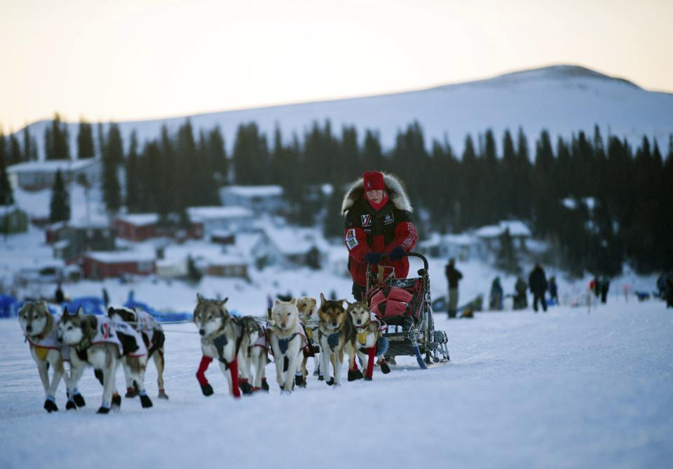 Aliy Zirkle leaves the White Mountain, Alaska, checkpoint during the Iditarod Trail Sled Dog Race on Tuesday, March 13, 2012. Zirkle, currently running second, trails leader Dallas Seavey. (AP Photo/Anchorage Daily News, Marc Lester)