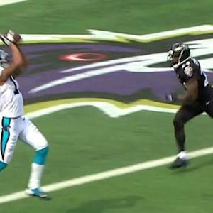 Carolina Panthers wide receiver Kelvin Benjamin 28-yard touchdown