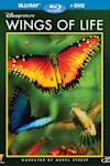 Poster of Wings of Life