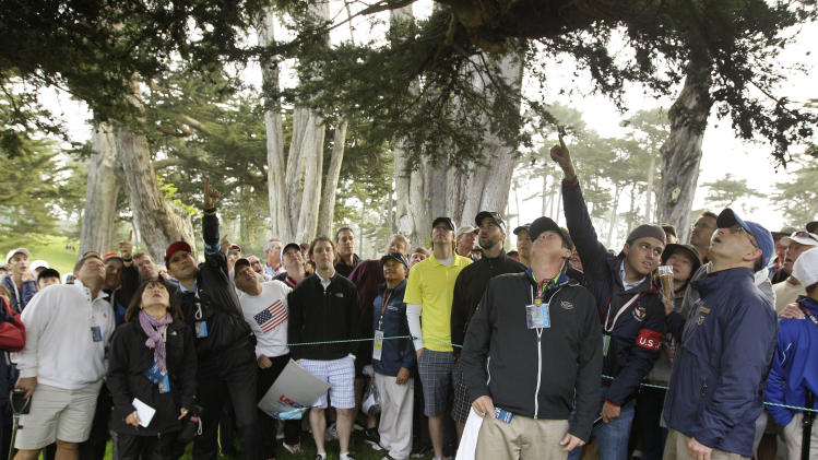 Fans point to a ball thought to be Phil Mickelson's during the first round of the U.S. Open Championship golf tournament Thursday, June 14, 2012, at The Olympic Club in San Francisco. (AP Photo/Eric Risberg)