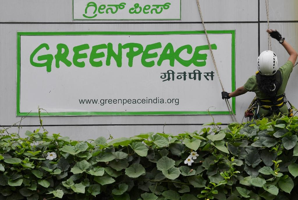Greenpeace wins court ruling in battle with India govt